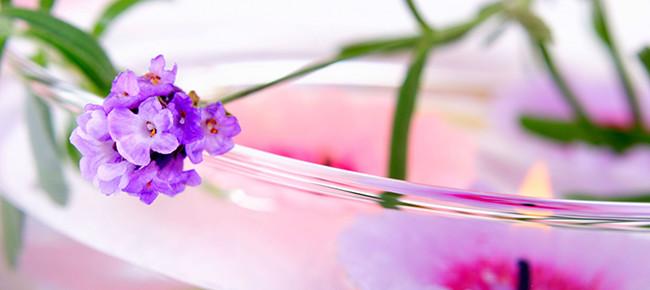 lavender-flower-680