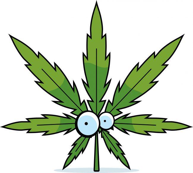 marijuana-leaf-cartoon-full
