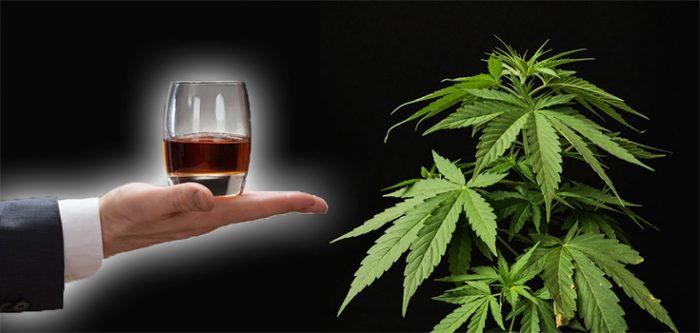 alcohol and marijuana