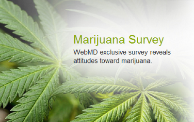 marijuana survey