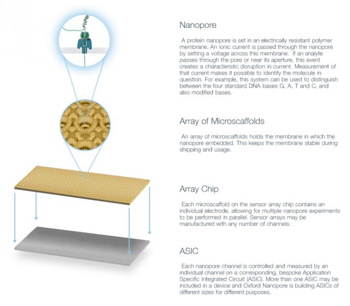 nanopore-medical-technology