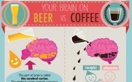 beer vs coffee inforgraphic
