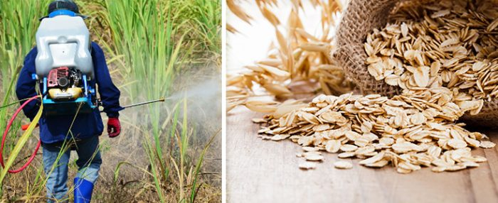 oats and pesticides