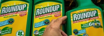 It's Official: California Lists Monsanto's Glyphosate as a Carcinogen