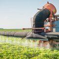 pesticides soybean field