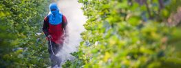 EPA Delays Rule That Would Help Prevent Pesticide Poisoning