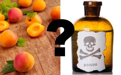poison?