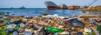 Plastic Bottles Could Lead to a Real Environmental Crisis, Scientists Warn