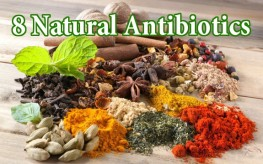 spices assortment1 263x164 Natural Immunity: 8+ Natural Antibiotics to Replace the Pharmaceuticals for Good