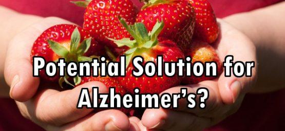 strawberries Alzheimer's