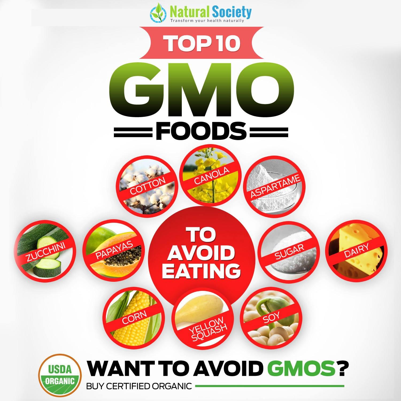 Gmo Foods Dangers List