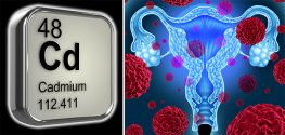 Study: Excessive Cadmium Linked to Higher Risk of Endometrial Cancer