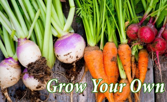 grow vegetables