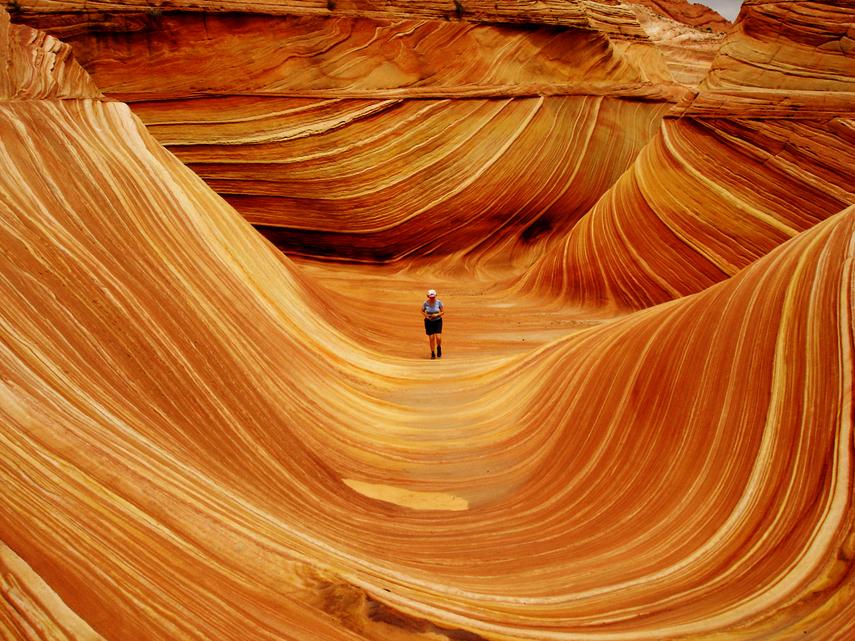 wave_tourist
